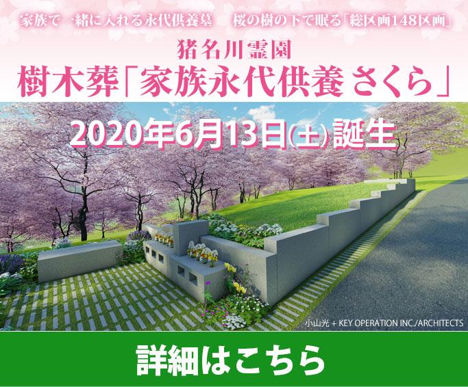 樹木葬「家族永代供養さくら」